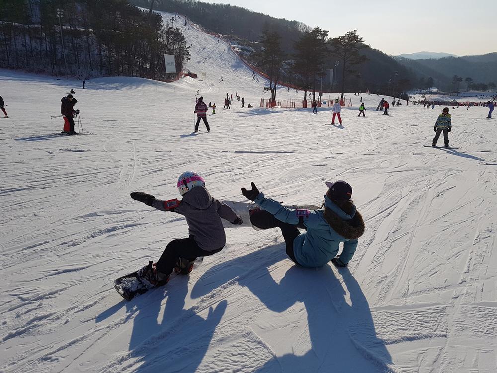 스키장에서 서로 '쾅' 충돌 사고의 전말